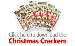 Download Christmas Crackers Leaflet